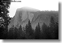 black and white, california, half dome, horizontal, morning, mountains, nature, trees, west coast, western usa, yosemite, photograph