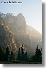 california, morning, mountains, trees, vertical, west coast, western usa, yosemite, photograph