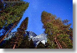 california, horizontal, mountains, nature, nite, plants, sky, star field, stars, trees, upview, west coast, western usa, yosemite, photograph