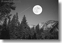black and white, california, horizontal, moon, nature, nite, plants, sky, star field, trees, west coast, western usa, yosemite, photograph