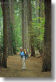 babies, boys, california, childrens, forests, jack and jill, jacks, jills, mothers, nature, people, plants, toddlers, trees, vertical, west coast, western usa, womens, woods, yosemite, photograph