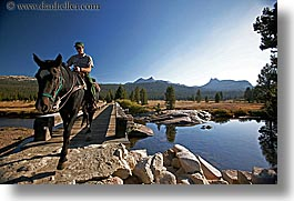 animals, california, horizontal, horses, nature, people, ranger, rivers, water, west coast, western usa, yosemite, photograph