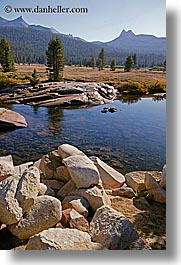 california, mountains, river bank, rockies, scenics, vertical, water, west coast, western usa, yosemite, photograph