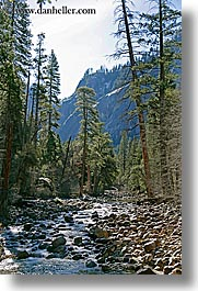 california, nature, plants, scenics, stream, trees, vertical, west coast, western usa, yosemite, photograph