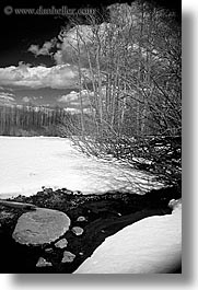 black and white, california, rivers, snow, stream, trees, vertical, west coast, western usa, yosemite, photograph