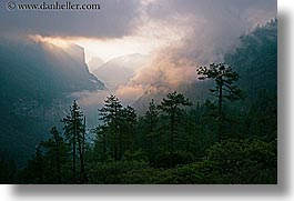 california, clouds, dawn, fog, horizontal, nature, trees, valley, valley view, west coast, western usa, yosemite, photograph