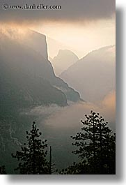 california, clouds, dawn, fog, nature, trees, valley, valley view, vertical, west coast, western usa, yosemite, photograph