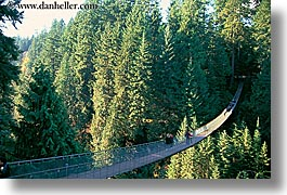 bridge, canada, capilano, horizontal, ropes, suspension, vancouver, photograph