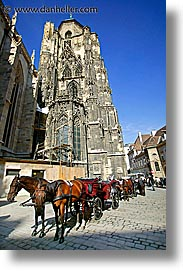 austria, europe, horses, st stephens, stephens, vertical, vienna, photograph