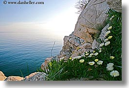 cliffs, croatia, dubrovnik, europe, flowers, horizontal, ocean, photograph