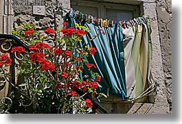 croatia, dubrovnik, europe, flowers, horizontal, laundry, roses, photograph