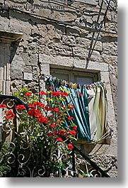 croatia, dubrovnik, europe, flowers, laundry, roses, vertical, photograph