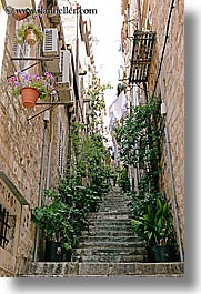 croatia, dubrovnik, europe, flowers, plants, stairs, vertical, photograph