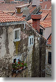 croatia, dubrovnik, europe, flowers, vertical, windows, photograph