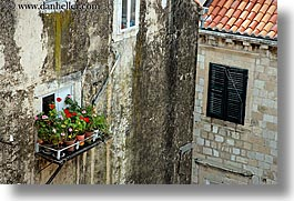 croatia, dubrovnik, europe, flowers, horizontal, windows, photograph