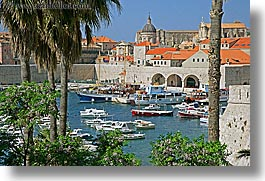 boats, croatia, dubrovnik, europe, harbor, horizontal, palmtree, rooftops, towns, trees, photograph
