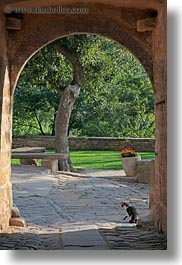 arches, archways, cats, cobblestones, croatia, europe, groznjan, materials, stones, structures, vertical, photograph