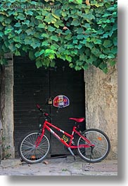bicycles, croatia, europe, green, groznjan, ivy, red, vertical, photograph