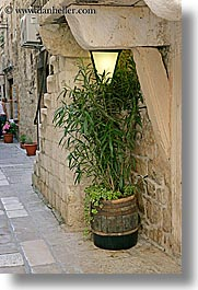 barrels, croatia, europe, hvar, planter, plants, vertical, photograph