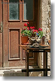 croatia, doors, europe, flowers, hvar, vertical, photograph
