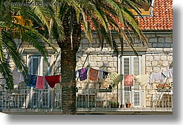 croatia, europe, horizontal, hvar, laundry, palmtree, photograph