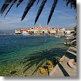 cityscapes, croatia, europe, korcula, palm trees, palmtree, shade tree, square format, water, photograph