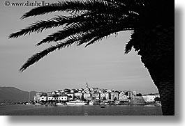 black and white, cityscapes, croatia, europe, horizontal, korcula, palm trees, palmtree, townview, water, photograph
