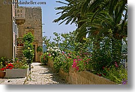 croatia, europe, flowers, horizontal, korcula, photograph