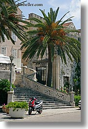 croatia, europe, korcula, motorcycles, palmtree, stairs, vertical, photograph