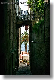 croatia, europe, korcula, narrow, narrow streets, palm trees, vertical, views, photograph