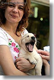croatia, dogs, europe, girls, humor, korcula, people, puppies, vertical, photograph