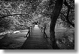 black and white, boardwalk, croatia, europe, forests, horizontal, krka, slow exposure, photograph