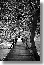 black and white, boardwalk, croatia, europe, forests, krka, slow exposure, vertical, photograph