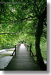 boardwalk, croatia, europe, forests, krka, slow exposure, vertical, photograph