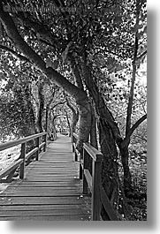 black and white, boardwalk, croatia, europe, forests, krka, long exposure, vertical, photograph