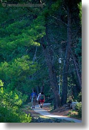 croatia, europe, hiking, mali losinj, trees, vertical, photograph