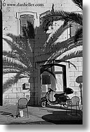 black and white, croatia, europe, milna, palm trees, shadows, vertical, walls, photograph