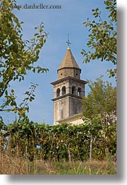 bell towers, croatia, europe, motovun, towns, trees, vertical, photograph