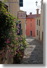 cobblestones, croatia, europe, flowers, materials, motovun, narrow streets, roads, stones, streets, towns, vertical, photograph