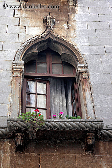 Gothic Windows and Flowers (2)  Gothic Windows ...