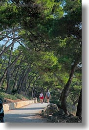 croatia, europe, hikers, hiking, lined, nature, paths, people, plants, rab, trees, vertical, photograph