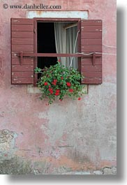 croatia, europe, from, hangings, plants, rovinj, vertical, windows, photograph