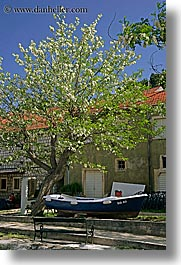 boats, croatia, europe, flowering, flowers, sipan, trees, under, vertical, photograph