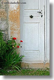 croatia, doors, europe, flowers, red, sipan, vertical, white, photograph