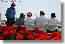 croatia, europe, geraniums, horizontal, men, old, sitting, split, photograph