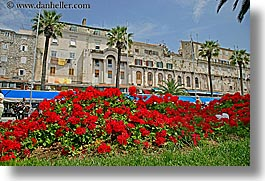 buildings, croatia, europe, flowers, horizontal, split, photograph