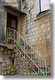 croatia, europe, flowers, trogir, vertical, photograph