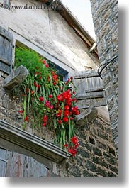 croatia, europe, flowers, perspective, trogir, upview, vertical, windows, photograph