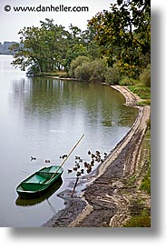 bay, birds, boats, bohemia, czech republic, europe, vertical, photograph