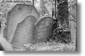 black and white, czech republic, europe, graves, horizontal, jewish, jewish cemetary, mikulov, slow exposure, photograph
